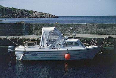 salmon3-1-72