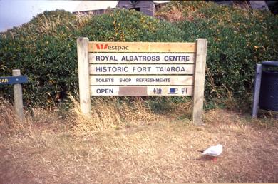 Albatros_Centre