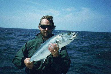 sletten havn fiskebutik