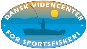 DVCS Logo 2