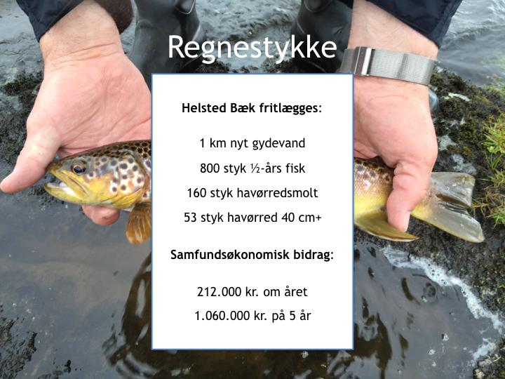 Svejstrup Bæk Calc9