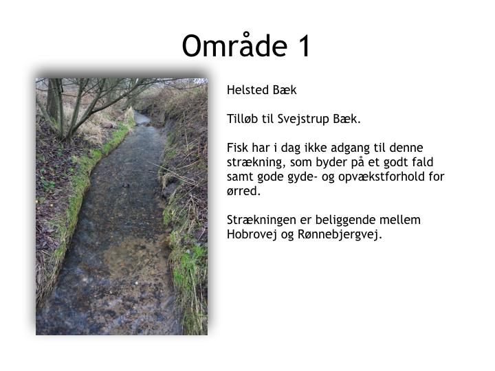 Svejstrup Bæk.034